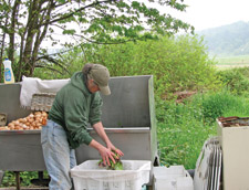 Michaele Blakely washes her produce.