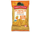 pumpkin tortilla chips