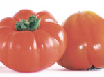Brandywine heirloom tomato