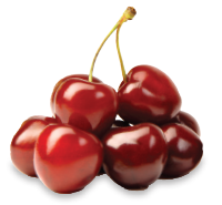 Lapin cherries
