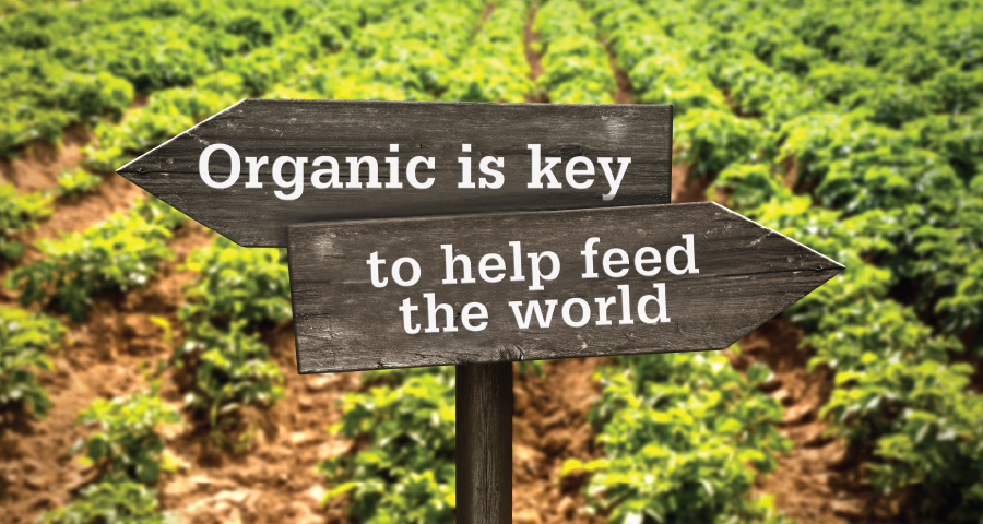 key to feeding the world Can organic farming feed us all the only people who think organic farming can feed the world are delusional hippies, hysterical moms, and self-righteous organic farmers.