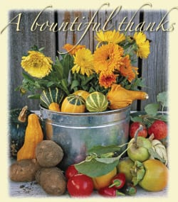 Image of flowers and squash, text reading 'A bountiful thanks,' cover artwork for Sound Consumer November 2004 issue