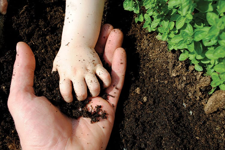 soil hands baby and parent