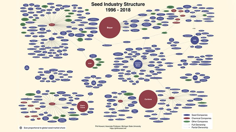 Seed industry structure chart by Professor Phil Howard.