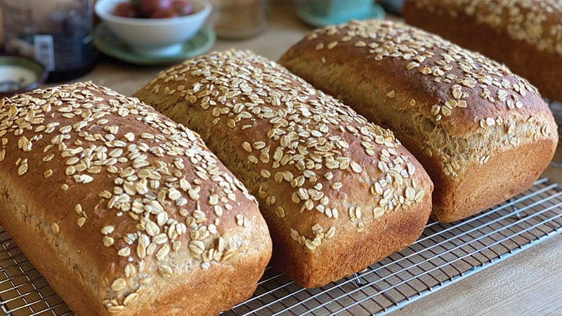 Baked Oat loaves by Nancy Leson